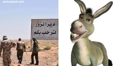 """Photo of سوري يطعم عناصر تابعين لإيران """"لحم حمير"""" على مدى أشهر وبسعر لحم البقر"""