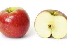 Photo of فوائد تناول بذور التفاح .. وما الكمية المسموح بتناولها وما هي الكميات السامة في بذور التفاح