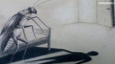 Photo of لماذا يتحول الإنسان إلى حشرة؟.. قراءة في رواية التحول لكافكا