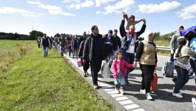 Photo of منظمة دولية تكشف حقائق هامة حول قرار الترحيل في الدنمارك وأخرى تتوعد بانفراج قريب .. وهذه التفاصيل !